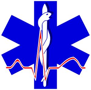 11949848291603956253paramedic_cross_01.svg.med