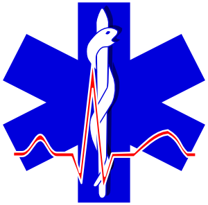 11949848291603956253paramedic_cross_01.svg.med